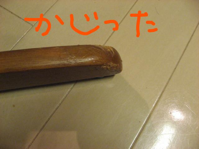 f:id:maki-mama:20081223173018j:image:w300