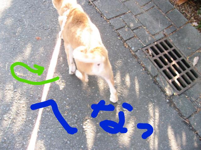f:id:maki-mama:20081225102046j:image:w300