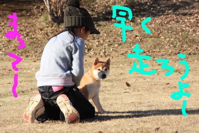 f:id:maki-mama:20081227154811j:image:w300