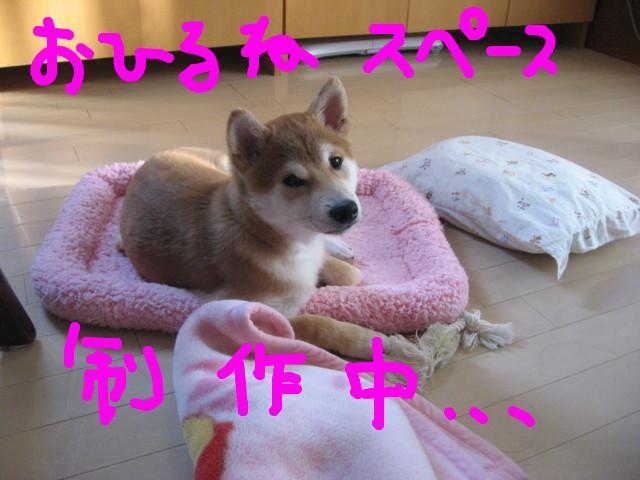 f:id:maki-mama:20081230143248j:image:w300