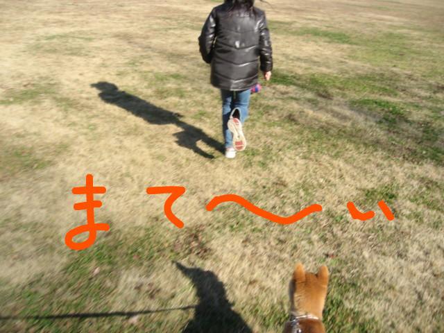 f:id:maki-mama:20081231180739j:image:w300