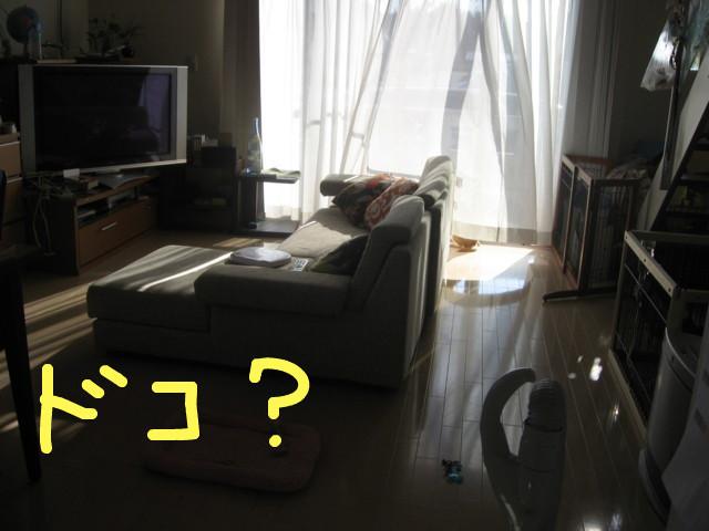 f:id:maki-mama:20090105203106j:image:w300