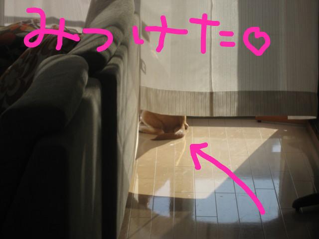 f:id:maki-mama:20090105203109j:image:w300