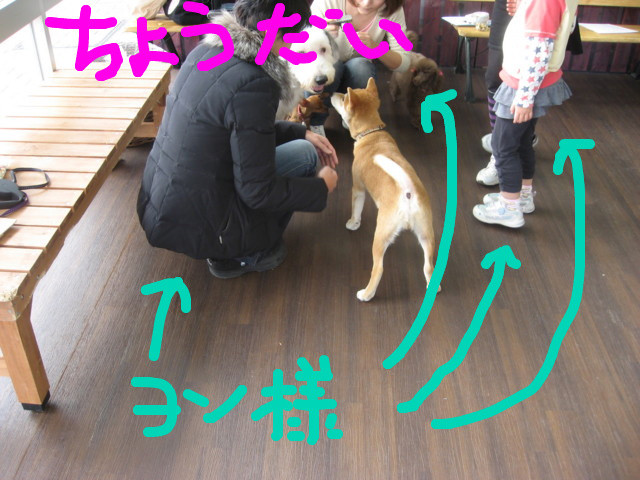 f:id:maki-mama:20090108092206j:image:w300
