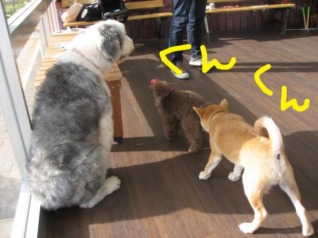 f:id:maki-mama:20090108092209j:image:w300