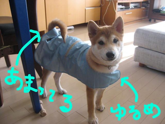 f:id:maki-mama:20090111124842j:image:W300