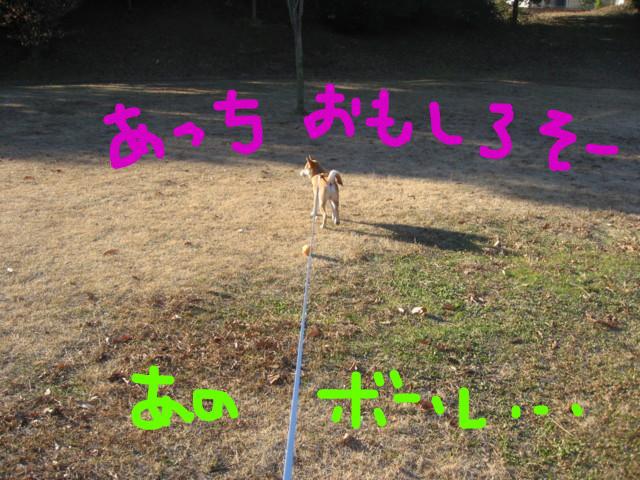 f:id:maki-mama:20090116102455j:image:w300