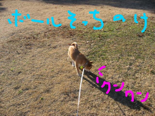 f:id:maki-mama:20090116102505j:image:w300