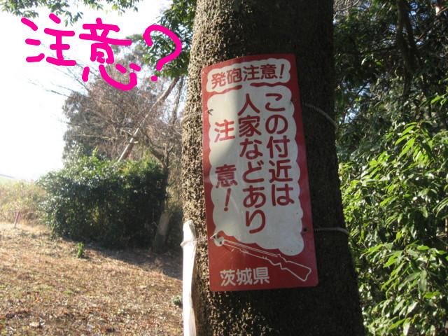 f:id:maki-mama:20090117105501j:image:w300