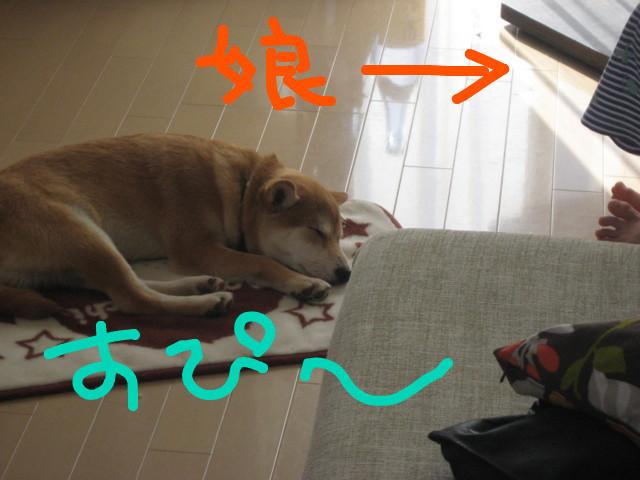 f:id:maki-mama:20090117105509j:image:w300