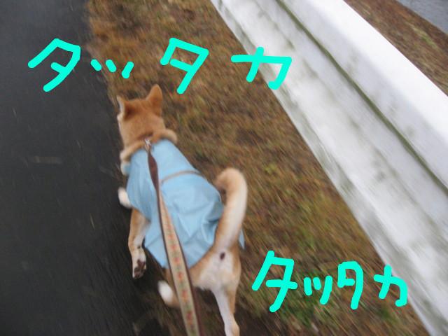 f:id:maki-mama:20090123084201j:image:w300