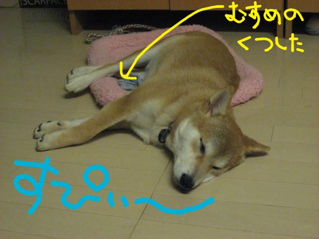 f:id:maki-mama:20090125230918j:image:w300