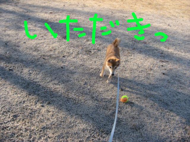 f:id:maki-mama:20090126144032j:image:w300