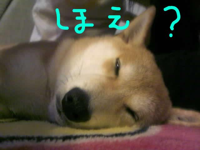 f:id:maki-mama:20090127112632j:image:w300