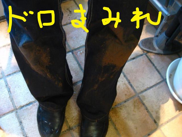 f:id:maki-mama:20090131095000j:image:w300