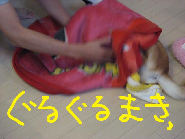 f:id:maki-mama:20090131131246j:image:w300