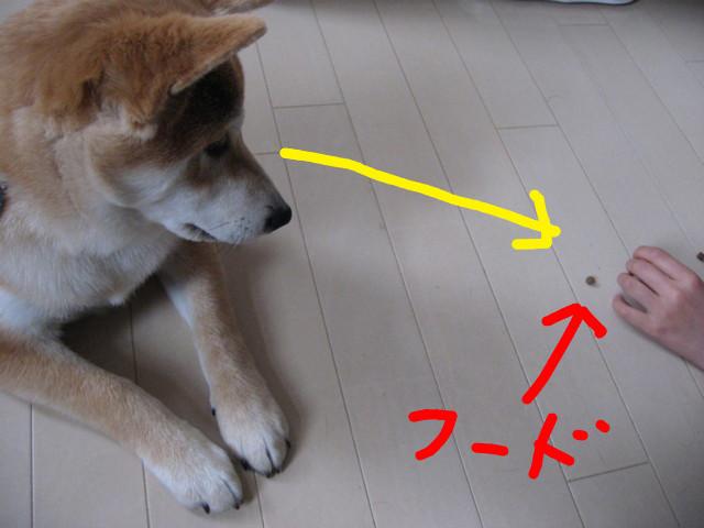 f:id:maki-mama:20090131170028j:image:w300