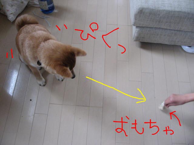 f:id:maki-mama:20090131170029j:image:w300