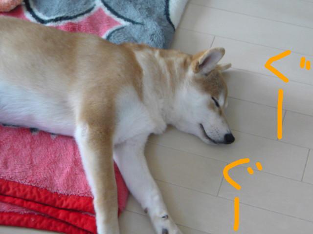 f:id:maki-mama:20090203121929j:image:w300