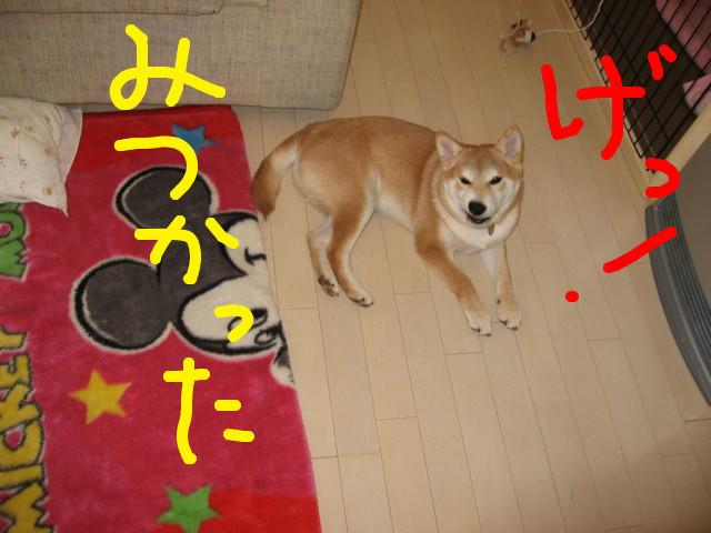 f:id:maki-mama:20090204114345j:image:w300