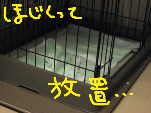 f:id:maki-mama:20090205101046j:image:w300