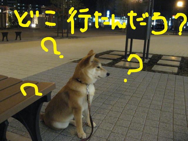 f:id:maki-mama:20090205101050j:image:w300