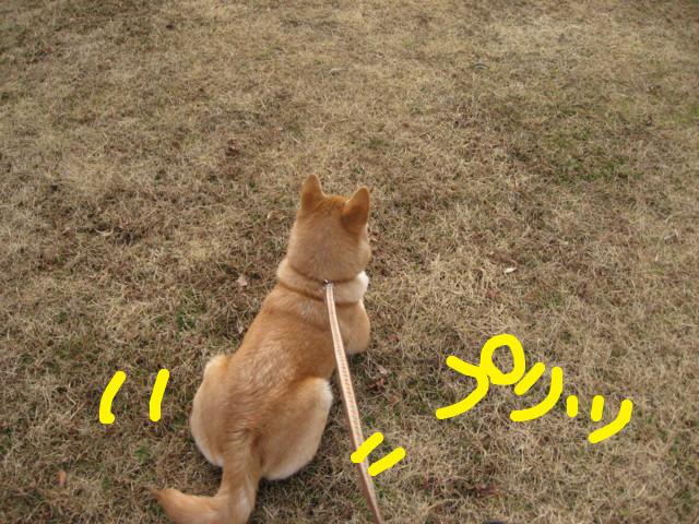 f:id:maki-mama:20090205101054j:image:w300