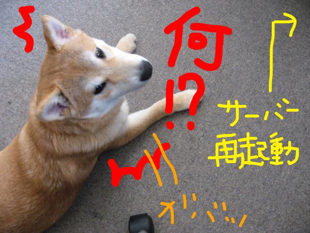 f:id:maki-mama:20090206155655j:image:w300