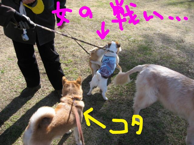 f:id:maki-mama:20090208174217j:image:w300