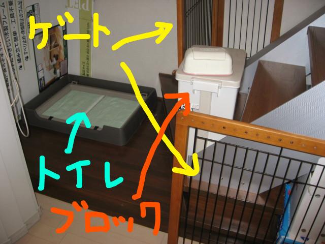 f:id:maki-mama:20090208174222j:image:w300