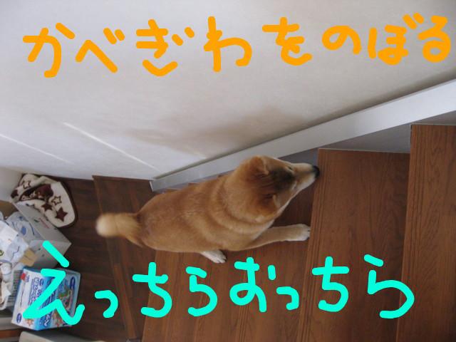 f:id:maki-mama:20090208174226j:image:w300