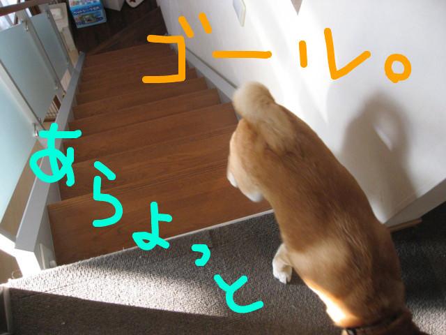 f:id:maki-mama:20090208174227j:image:w300