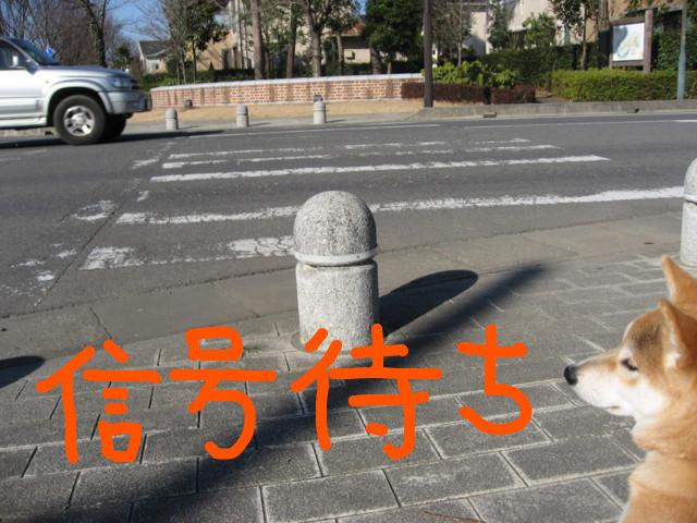 f:id:maki-mama:20090208174230j:image:w300