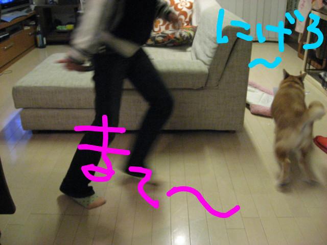 f:id:maki-mama:20090210195309j:image:w300