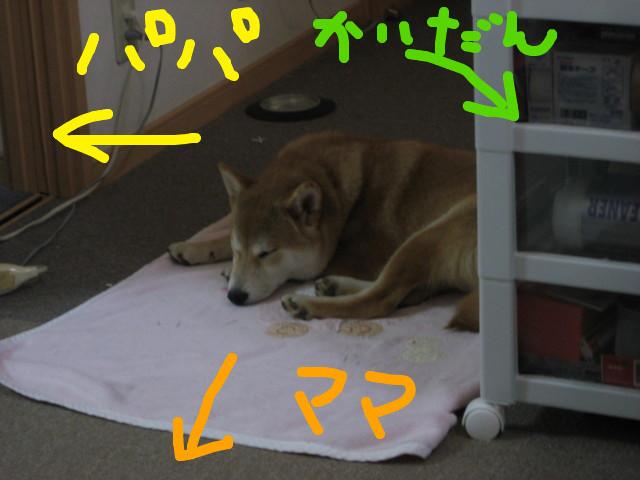 f:id:maki-mama:20090213150216j:image:w300
