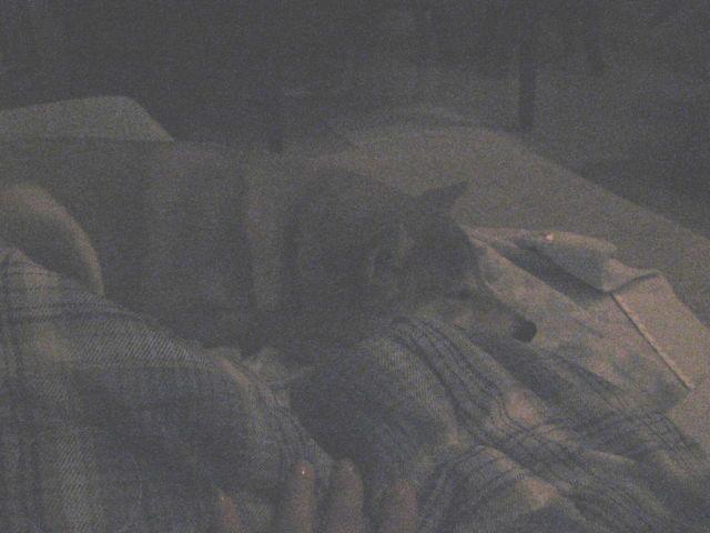 f:id:maki-mama:20090214060848j:image:w300