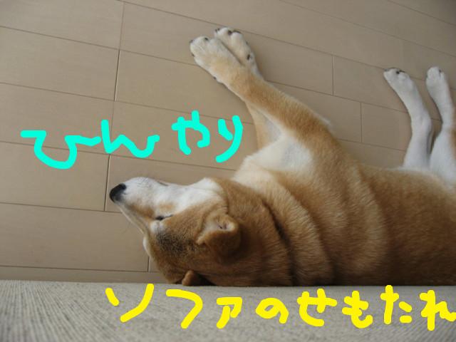 f:id:maki-mama:20090214143842j:image:w300