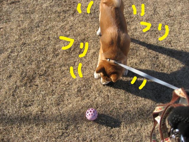 f:id:maki-mama:20090217093000j:image:w300
