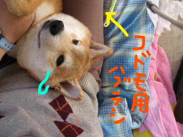 f:id:maki-mama:20090218141830j:image:w300
