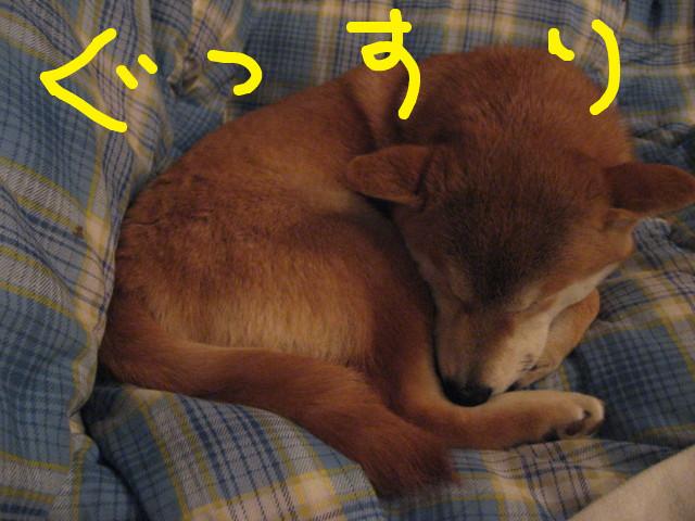f:id:maki-mama:20090219101418j:image:w300