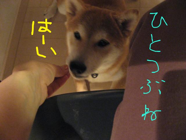 f:id:maki-mama:20090220102024j:image:w300