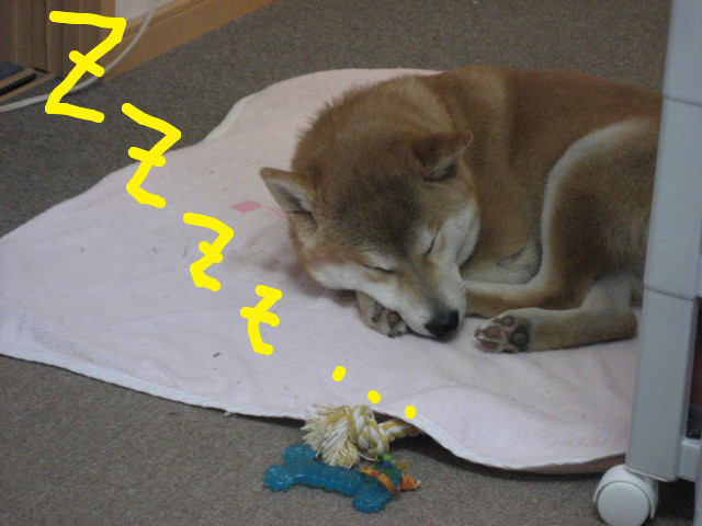 f:id:maki-mama:20090220120258j:image:w300