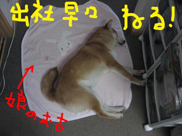 f:id:maki-mama:20090223133632j:image:w300