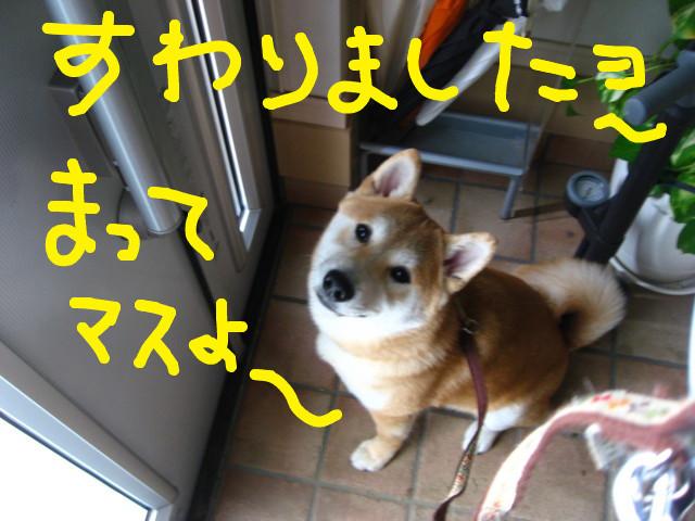 f:id:maki-mama:20090225160215j:image:w300