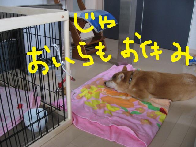 f:id:maki-mama:20090227113842j:image:w300