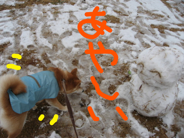 f:id:maki-mama:20090227172401j:image:w300