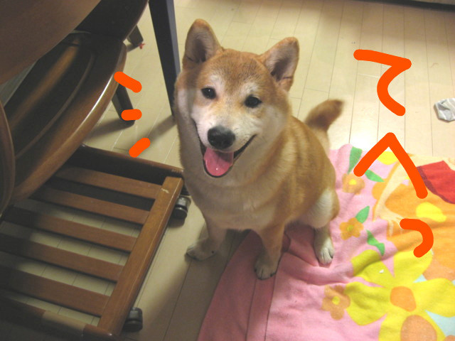 f:id:maki-mama:20090227231557j:image:w300
