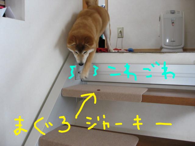 f:id:maki-mama:20090301153657j:image:w300
