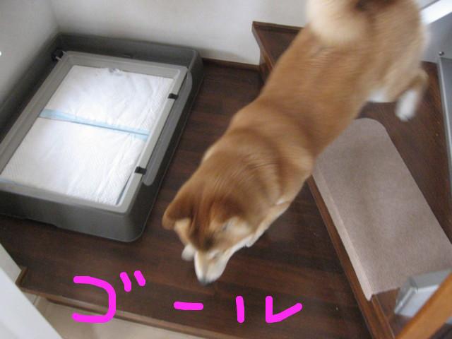 f:id:maki-mama:20090305155404j:image:w300