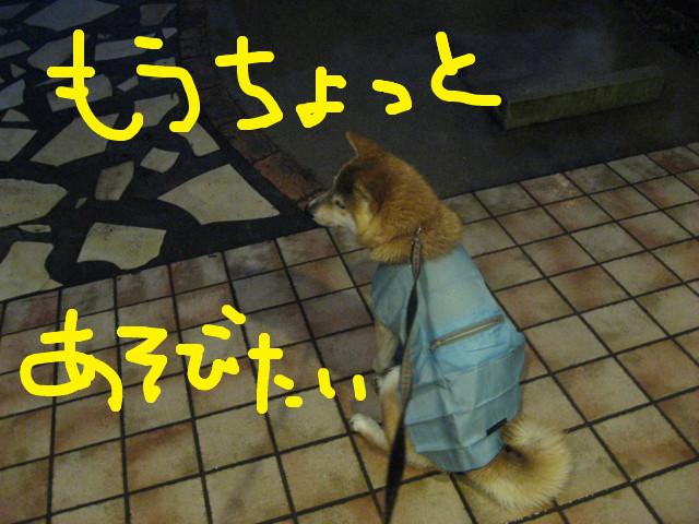 f:id:maki-mama:20090306180957j:image:w300